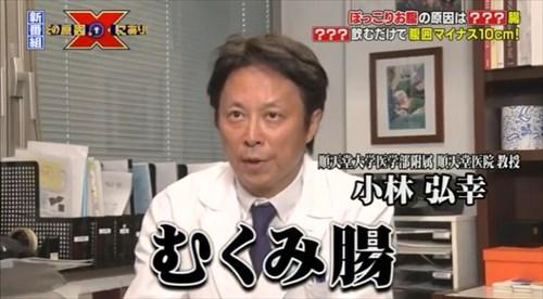 kobayashihiroyukijuntendo