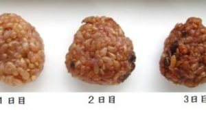 発酵玄米の魅力について♪